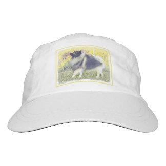 Keeshond in Aspen Hat