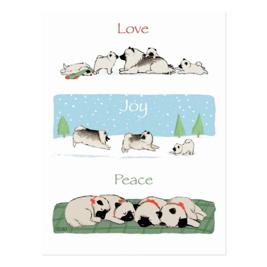 Keeshond Love Joy Peace Postcard