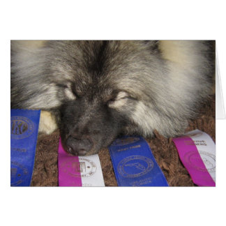 Keeshond Show Puppy Card