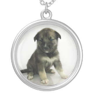 Keeshond Siberian Husky Crossbreed Puppy Silver Plated Necklace