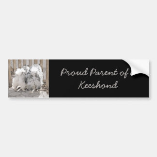 Keeshonds at the Gate Painting - Original Dog Art Bumper Sticker