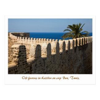 Kelibia. Tunis. Postcard