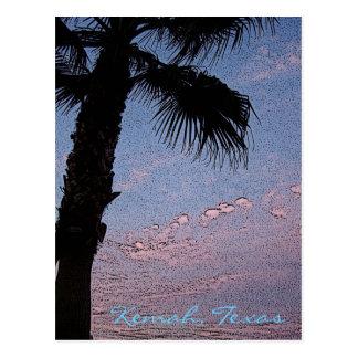 Kemah Palm Sunset postcard - customized