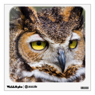 Kendall County, Texas. Great Horned Owl Wall Sticker