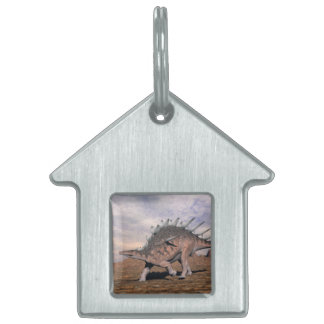 Kentrosaurus dinosaur in the desert - 3D render Pet Name Tag