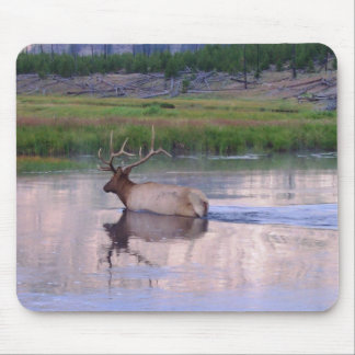 Kentucky Elk Mouse Pad