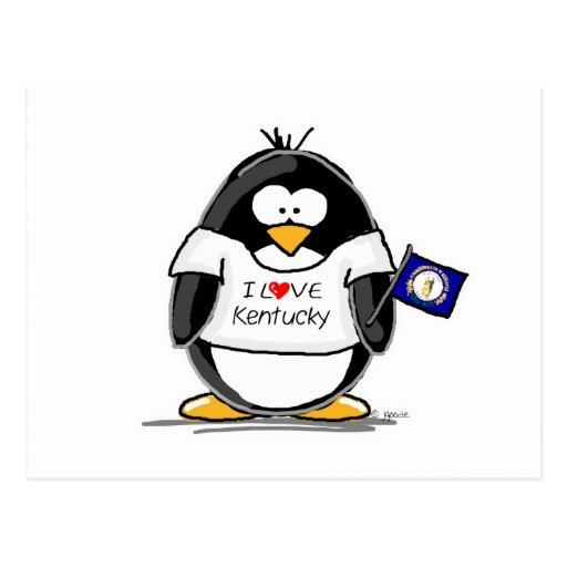 Kentucky Penguin Postcard
