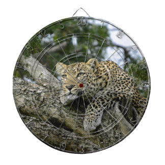 Kenya Leopard Tree Africa Safari Animal Wild Cat Dartboard