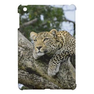 Kenya Leopard Tree Africa Safari Animal Wild Cat iPad Mini Cases