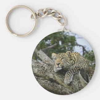 Kenya Leopard Tree Africa Safari Animal Wild Cat Keychain