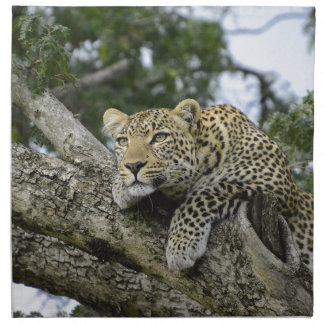 Kenya Leopard Tree Africa Safari Animal Wild Cat Napkin