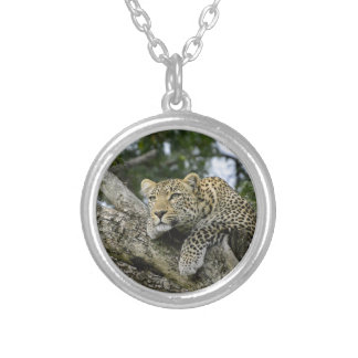 Kenya Leopard Tree Africa Safari Animal Wild Cat Silver Plated Necklace
