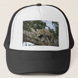 Kenya Leopard Tree Africa Safari Animal Wild Cat Trucker Hat