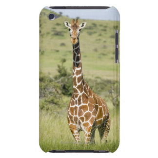 Kenya, Lewa Conservancy, Masai Giraffe standing iPod Touch Covers
