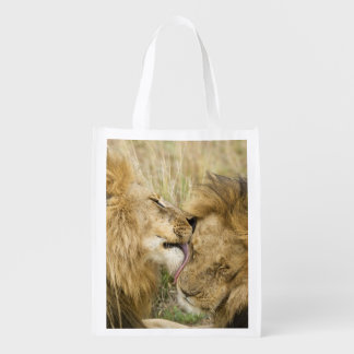 Kenya, Masai Mara. Close-up of one male lion Reusable Grocery Bags