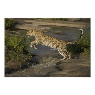 Kenya, Masai Mara Game Reserve. African 2 Art Photo