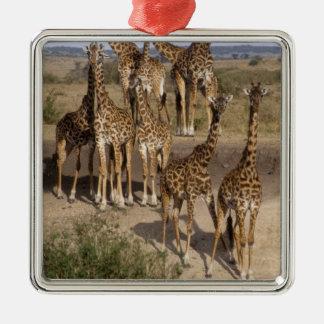 Kenya: Masai Mara Game Reserve herd of one dozen Metal Ornament