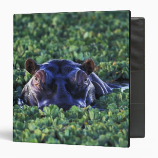 Kenya, Masai Mara National Reserve. Vinyl Binders