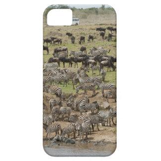 Kenya, No Water No Life Mara River Expedition, 5 Case For The iPhone 5