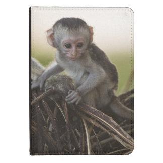 Kenya, Samburu Game Reserve. Vervet Monkey Kindle Case