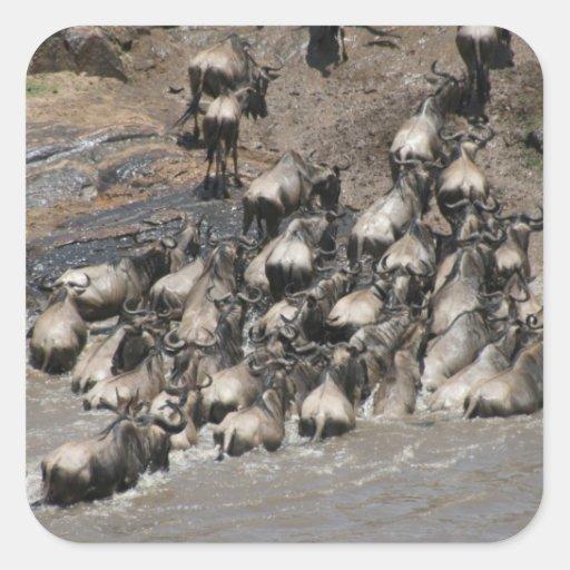 kenya wildebeest stickers