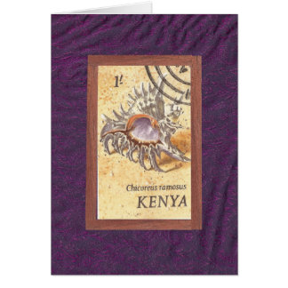 Kenyan Conch Card