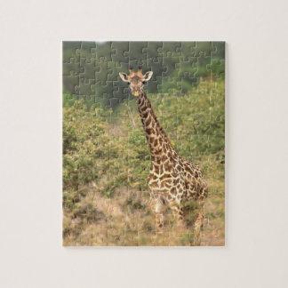 Kenyan giraffe jigsaw puzzle