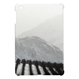 Keremeos area orchard in winter cover for the iPad mini