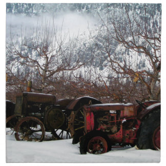 Keremeos Orchard in Winter Napkin