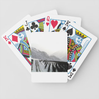 Keremeos orchard in winter on the benches bicycle playing cards