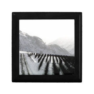 Keremeos orchard in winter on the benches gift box