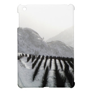 Keremeos orchard in winter on the benches iPad mini case
