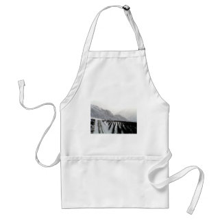 Keremeos orchard in winter on the benches standard apron