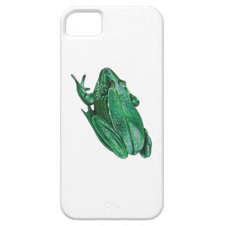 Kermit's Adenture iPhone 5 Case