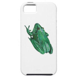 Kermit's Adenture iPhone 5 Cases