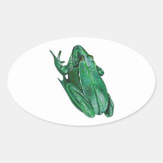 Kermit's Adenture Oval Sticker