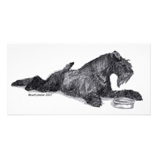 Kerry Blue Terrier with Bowl Custom Photo Card