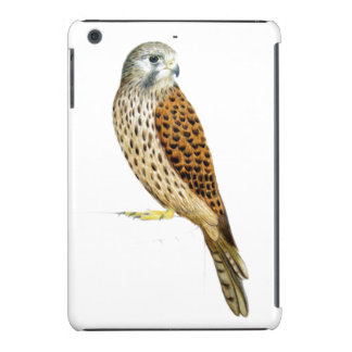 Kestrel 2011 iPad mini covers