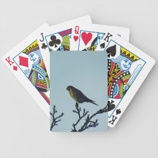 Kestrel Bicycle Playing Cards