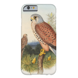 Kestrel Falcon John Gould Birds of Great Britain Barely There iPhone 6 Case