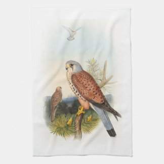 Kestrel Falcon John Gould Birds of Great Britain Kitchen Towel