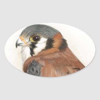 Kestrel Oval Sticker