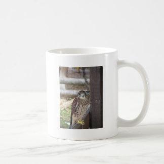 Kestrel perched on a fence post coffee mug