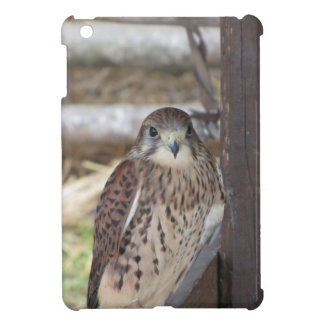 Kestrel perched on a fence post cover for the iPad mini