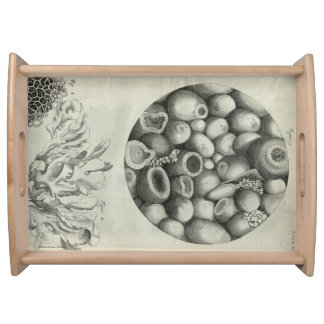 Kettering Stone Serving Tray