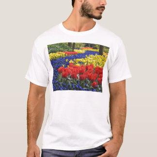 keukenhof gardens floral display, Holland T-Shirt