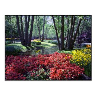 Keukenhof Gardens Netherlands, Postcard Template