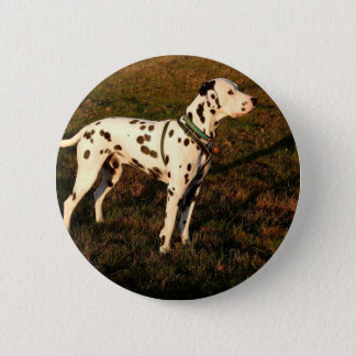 Kevin the Dalmatian 2 Inch Round Button