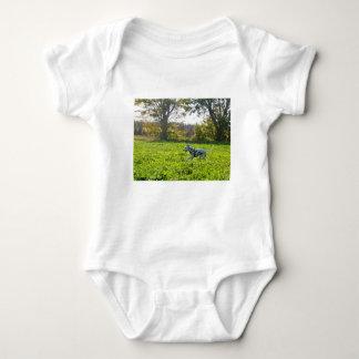 Kevin the Dalmatian Baby Bodysuit