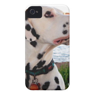 Kevin The Dalmatian Case-Mate iPhone 4 Case